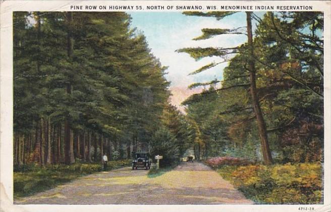 Wisconsin Pine Row On Highway 55 North Of Shawano Monominee Indian Reservatio...