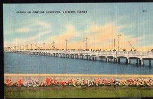 Florida ~ Angling Fishing on Ringling Causeway at SARASOTA LINEN