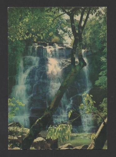 Postcard 1960years ANGOLA NATURE FLORA  WATER FALLS TREES