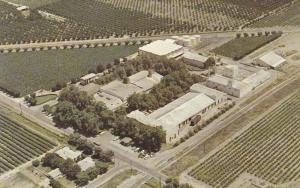 The Christian Brothers, Mount Tivy Winery, Reedley, California, 40-60s