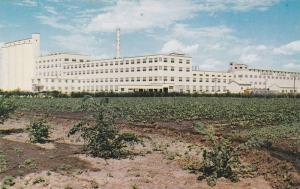 Sugar Factory , TABER , Alberta , Canada , 40-60s