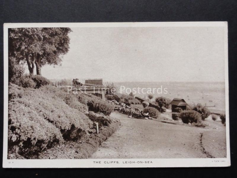 Essex: Leigh on Sea THE CLIFFS - Old Postcard by Raphael Tuck & Sons LS 6