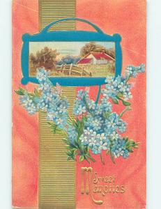 Divided-Back BEAUTIFUL FORGET-ME-NOT FLOWERS & COUNTRY SCENE o9367