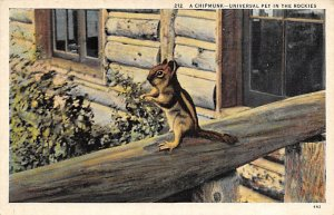 Squirrel/Chipmunks/Woodchucks Universal Pet in the Rockies, USA Unused