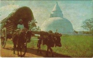 CPM Bullock Cart and Anicut - Dagoba at Tissa CEYLON SRI LANKA (1085969)