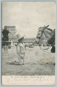 Atlantic City NJ~Boy In Straw Hat To Donkey~Touches Nose, Can't You Talk?~1907