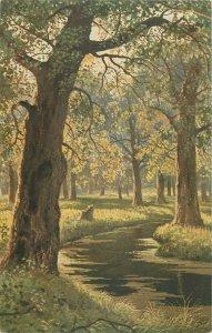 RUSSIA ART publisher K.G.A. postcard oak wood Chichkine