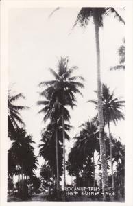 RP: NEW GUINEA , 1940s ; Cocanut Trees