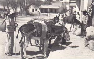 Mexico Native with Burros Real Photo