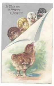 Tuck Easter Postcard Chicks Silver Vintage Embossed Series 1