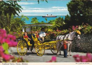 Horse And Buggy Traditional Surrey Nassau Bahamas