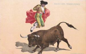 Bull Fight Salto Del Trascuerno