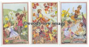su3292 - Various Woodland Fairies by the Artist - M.Sherborne - 5 postcards