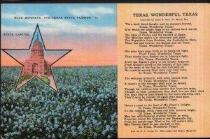 Texas Various Views - Wonderful Texas copyright by Julien C. Hyer Poem - LINEN