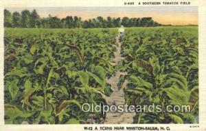 Southern Tobacco Field Farming Postcard Post Card Winston Salem, NC, USA Sout...