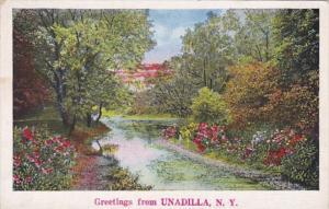 New York Greetings From Unadilla