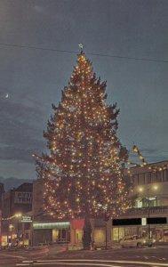 TACOMA , Washington , 50-60s ; Champion Christmas Tree