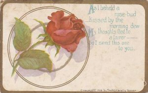 Fred Cavally Deluxe Series Red Rose 1909