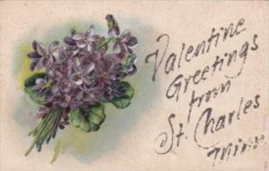 Valentine's Greetings From St Charles Minnesota With Beautiful Flowers