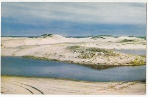 Cape Cod scenic dunes, unused Postcard