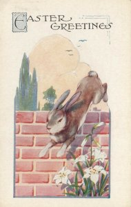 EASTER, 1900-10s; Greetings, Rabbit jumping over brick wall
