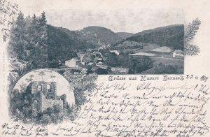 Gruss Aus Kurort Berneek , Germany , PU-1898, 2-views
