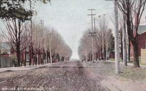 NAPANEE, Ontario , Canada , 1900-10s ; Bridge Street