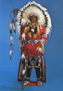 Chief in Regalia Sculpture First Nations Indigenous Thomas Domiani Postcard D20