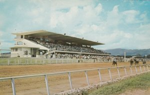 KINGSTON , Jamaica, B.W.I., 40-60s; Caymanas Horse Race Track