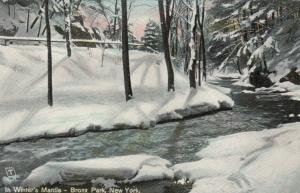 BRONX PARK , New York, 1900-10s; In Winter's Mantle ; TUCK 2634