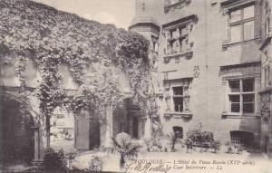 France Toulouse L'Hotel du Vieux Raisin La Cour Interieur