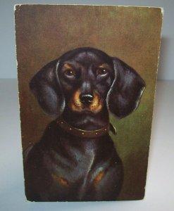 Dachshund Dog Vintage Postcard Unused Original Antique Series 3055 K & B., D