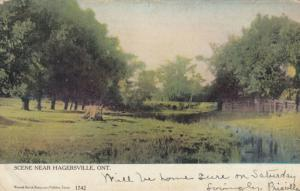 HAGERSVILLE , Ontario , Canada , 1906