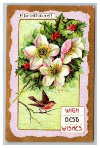 Vintage 1900's Christmas Postcard Embossed White Flowers Holly Berries Birds