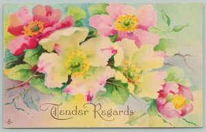 Flowers Greetings~Tender Regards~Pink and White Wild Roses~c1910 Postcard
