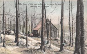 White River Junction Vermont~Making Maple Sugar Series #9~1908 Handcolored PC