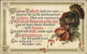 Thanksgiving - WINSCH Turkey & Leaves c1910 Postcard