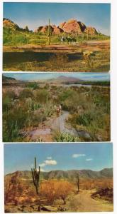 3 - Desert Scenes