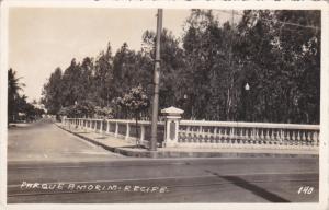 RP: Parque Amor - RECIFE , Brazil , 20-30s