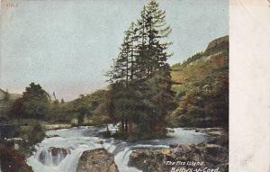 The Firs Island, Bettws-y-Coed, Wales, UK, 1900-1910s