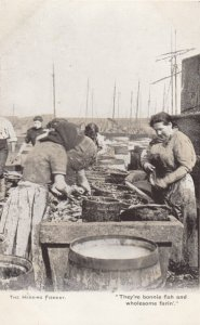 The Herring Fishery , UK , 00-10s