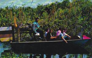 Florida Airboating In The Florda Everglades Along The Tamiami Trail Is An Exc...