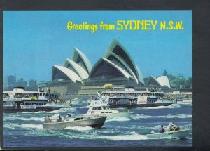 Australia Postcard - Greetings From Sydney, New South Wales  T8929