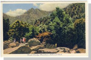 Great Smoky Mountains Nat'l Park,Postcard,NC/TN, Near Mint!