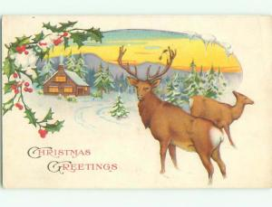 Pre-Linen Christmas DEER BY SNOWY HOME AB5936