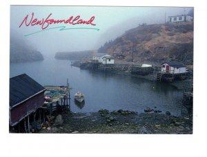 Quidi Vidi Harbour, Newfoundland, Large 5 X 7 Postcard