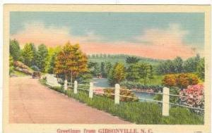Greetings,Roadside,Gibson ville,North  Carolina,1947