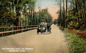 MA - Berkshires, Mohawk Trail. On Florida Mountain