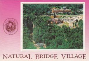 Virginia Natural Bridge Village