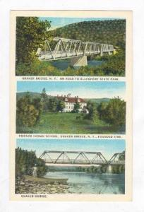 Indian School & Bridge,Quaker Bridge,NY 1910-20s